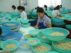 Thị xã Phước Long: Tích cực cải thiện môi trường đầu tư