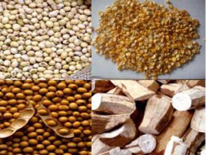 Nhập khẩu vật tư nông nghiệp tăng 10%
