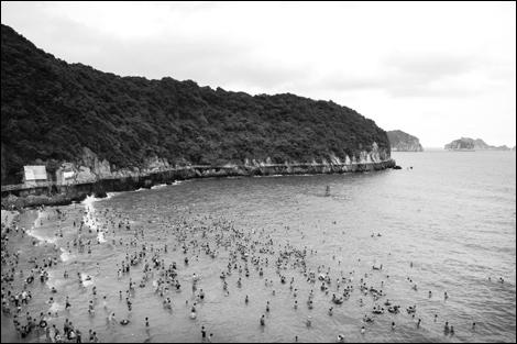Huyện Cát Hải: Sức hút từ dự án trọng điểm quốc gia
