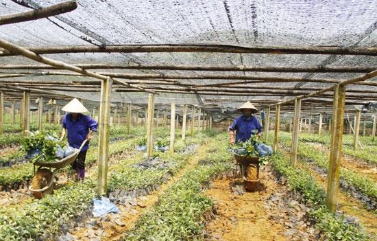 UBND huyện Mường Khương: Thành công từ phát huy nội lực