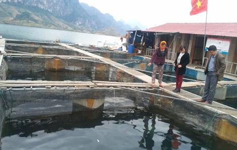 Huyện Quỳnh Nhai: Ổn định đời sống nhân dân sau tái định cư thủy điện Sơn La