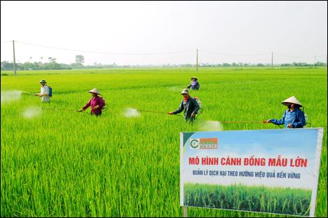 Huyện Giao Thủy: Phấn đấu trở thành huyện Nông thôn mới
