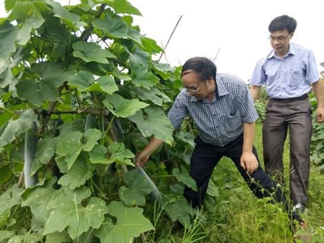 Huyện Yên Thế tạo thuận lợi cho nhà đầu tư