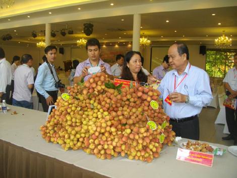 Huyện Lục Ngạn Phát triển nông nghiệp  theo hướng sản xuất hàng hóa