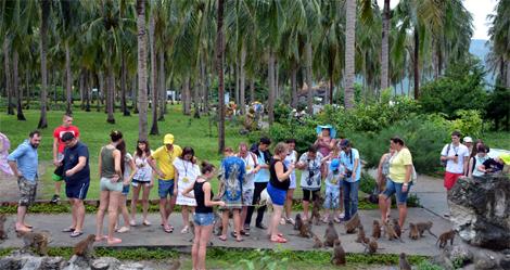 Đảo Khỉ Nha Trang: Độc đáo trong lòng du khách