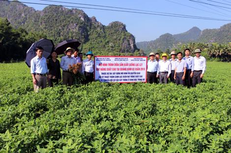 Huyện Tuyên Hóa: Ưu tiên thu hút dự án nông - lâm nghiệp