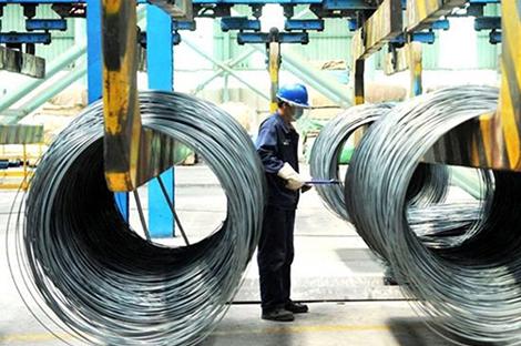 Rủi ro từ đề xuất quy định mới của WTO