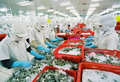 Mỹ công bố mức thuế sơ bộ về 0% với tôm Việt Nam