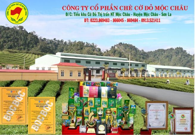 Công ty cổ phần chè Cờ đỏ Mộc Châu: Nâng cao và đổi mới  chất lượng chè Việt