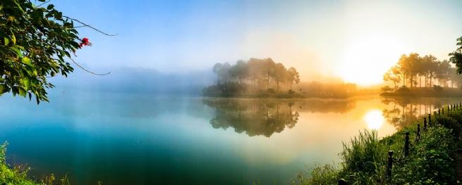 Công ty TNHH Phát triển du lịch  quốc tế Phượng Hoàng: Khai phá tiềm năng du lịch  rừng thông bản Áng