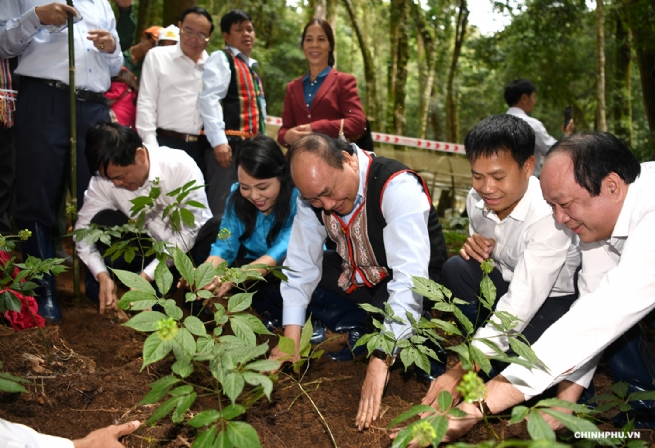 Bước chuyển mình trong phát triển nông nghiệp ƯDCNC