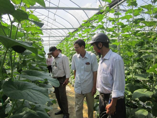 Bước tiến vững chắc từ  tái cơ cấu ngành nông nghiệp