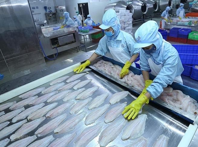 Xuất khẩu thủy sản sang thị trường CPTPP: Đáp ứng tiêu chuẩn khắt khe