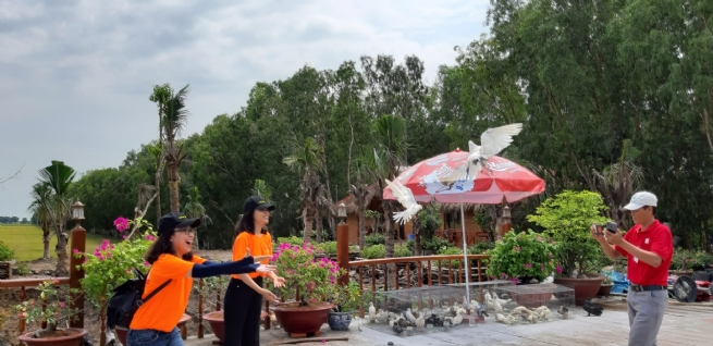 Surprisingly New Tra Su Tourist Area