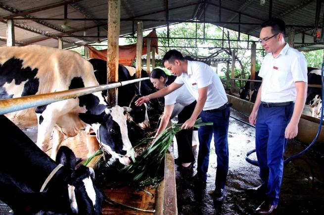AGRIBANK: Đồng hành cùng sự phát triển của tỉnh Vĩnh Phúc