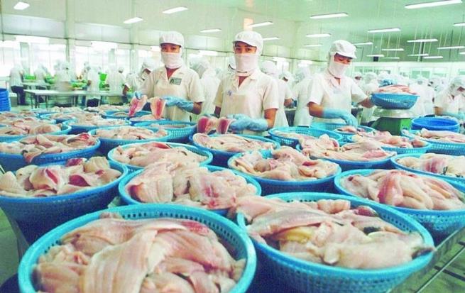 Xuất khẩu cá tra được kỳ vọng phục hồi mạnh trong năm 2021