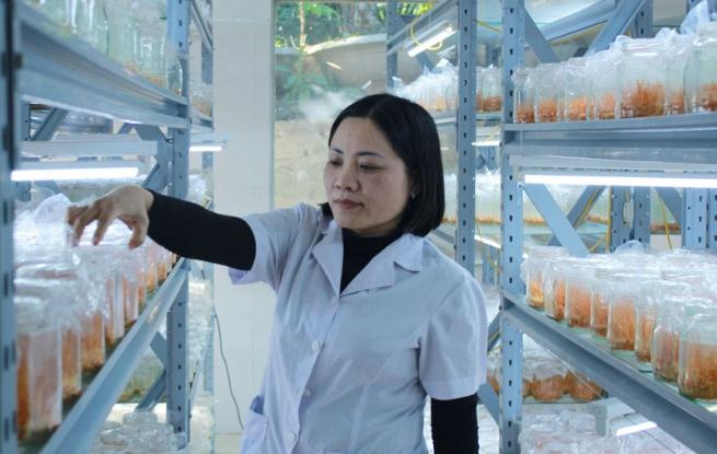 Công ty Biopharm Hòa Bình: Đồng hành cùng sức khỏe