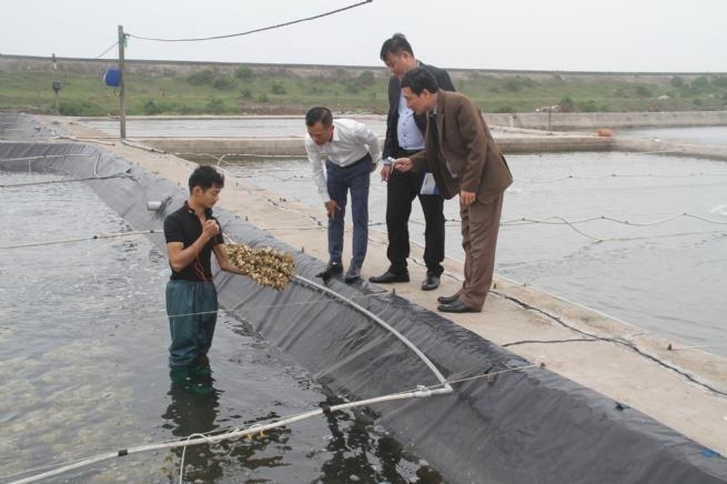 Thành công nhờ ứng dụng khoa học công nghệ trong  nuôi trồng thủy sản
