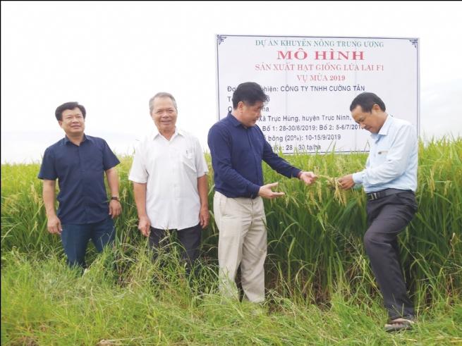 Công ty TNHH Cường Tân: Cùng người dân làm giàu từ cây lúa