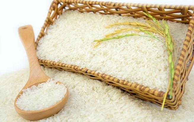 Dự báo tăng trưởng xuất khẩu nông sản khi EVFTA có hiệu lực