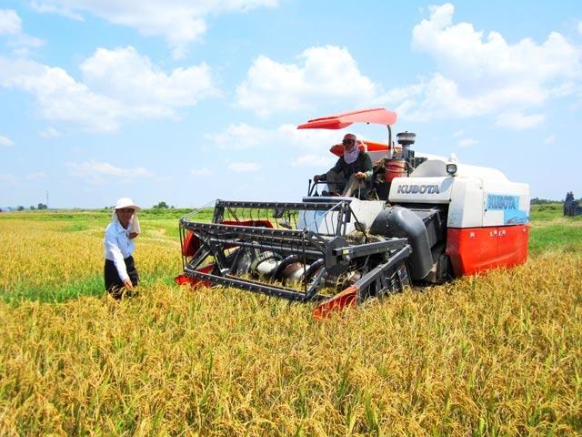 Quảng Trị: Khát vọng về một nền nông nghiệp công nghệ cao