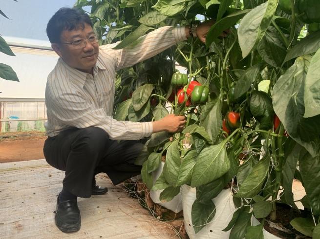 Công ty cổ phần Viên Sơn: Khẳng định thương hiệu Việt