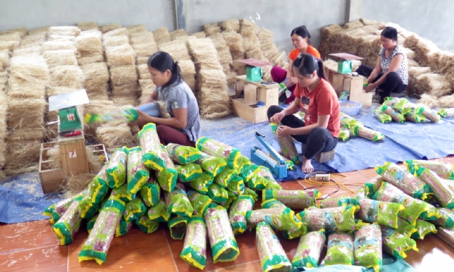 Bac Kan Enhances Linkages to Promote Consumption