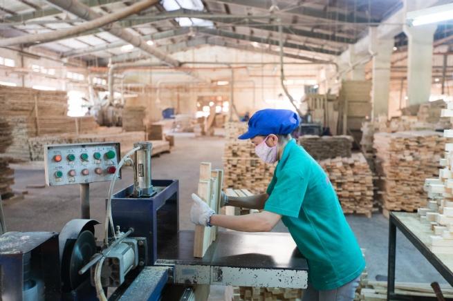 Công ty Cổ phần Việt Trung Quảng Bình: Vượt khó để viết tiếp trang sử mới