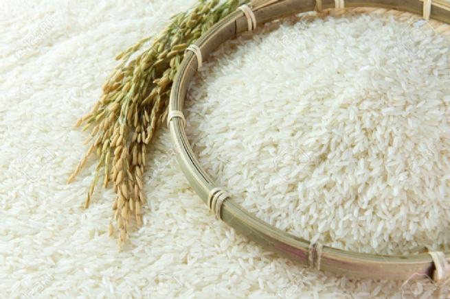 Xuất khẩu lô hàng gạo thơm sang EU theo EVFTA