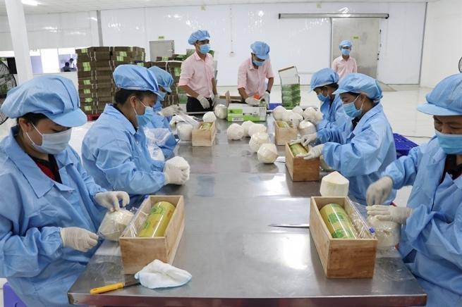 Cơ hội đẩy mạnh xuất khẩu rau, củ, quả Việt Nam sang EU