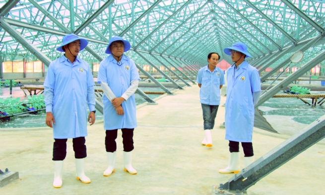 Viet - Uc Corporation - Leading High-tech Application, Lifting Vietnamese Prawns