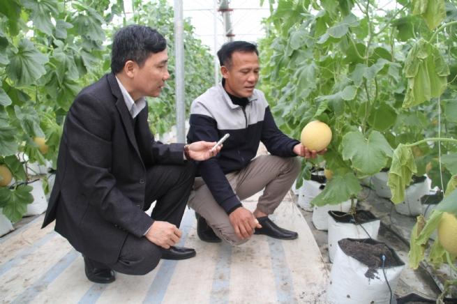 Phát triển ngành nông nghiệp theo  hướng hiện đại, bền vững