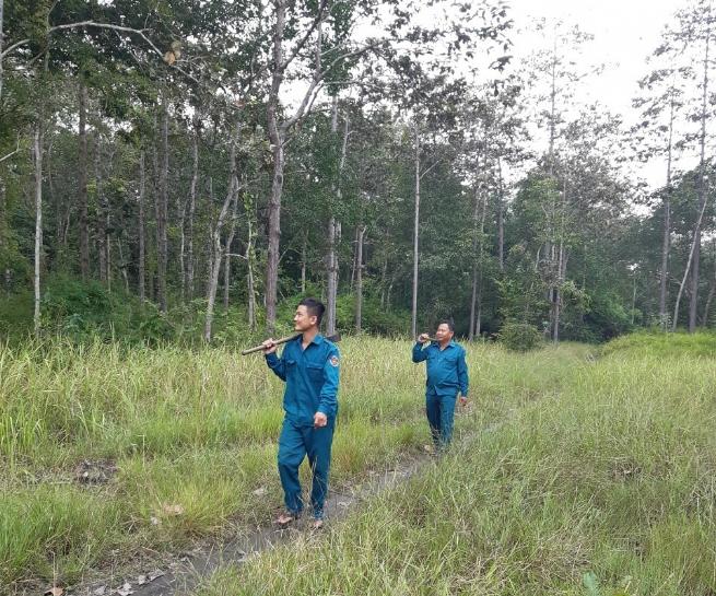 Nâng cao hiệu quả quản lý, bảo vệ rừng phòng hộ Dầu Tiếng
