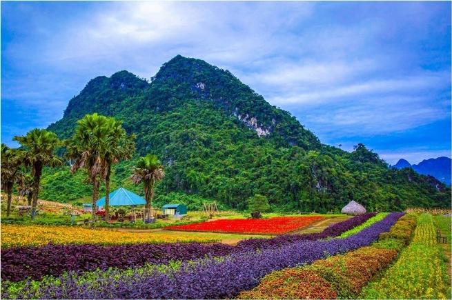 Yên Bái: Tiềm năng thu hút đầu tư du lịch và hạ tầng từ những kỳ quan