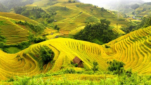 Lai Chau Tourism and Culture Week 2021 Scheduled for November