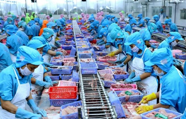 Xuất khẩu thủy sản có nhiều cơ hội cán đích 9 tỷ USD