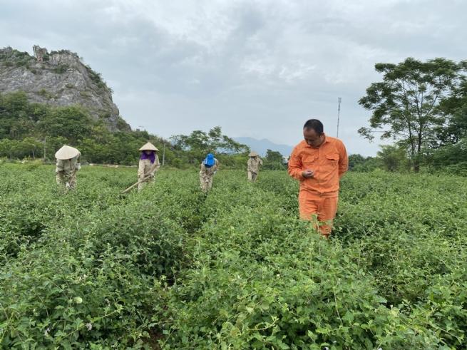 Thúc đẩy kinh tế nông nghiệp, nông thôn phát triển