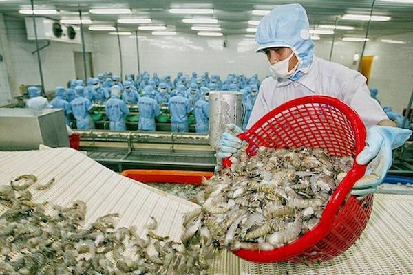 Xuất khẩu thủy sản giảm mạnh ở các thị trường