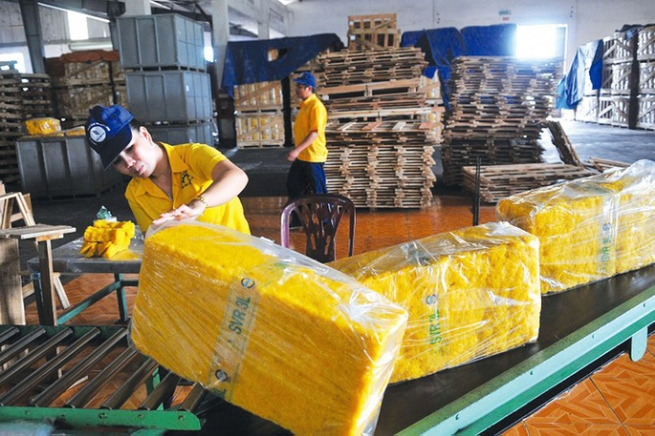 Xuất khẩu cao su ảnh hưởng lớn do cước vận chuyển cao